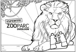 kleurplaat leeuw zooparc