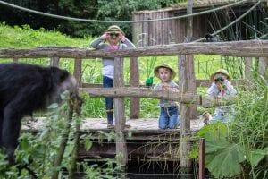 kinderen expeditie aap