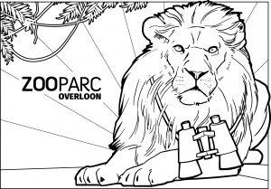 Kleurplaat ZooParc Leeuw